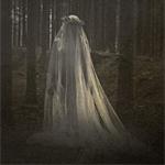 Аватар Образ девушки в белом одеяние на фоне устрашающе темного леса