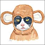 Аватар Кошка в костюме обезьяны