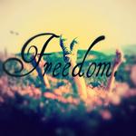 Аватар Человек лежит в траве (Freedom / Свобода)