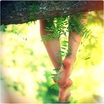 Аватар Ножки девушки свисают с дерева