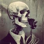 Аватар Череп с цветком