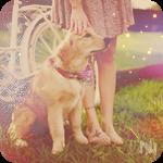 Аватар Золотистый ретривер сидит у ног девушки