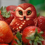 Аватар Красная сова спряталась среди клубники