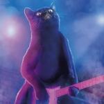 Аватар Кот играет на гитаре