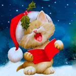 Аватар Рыжий котенок в новогоднем колпаке