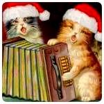 Аватар Котята в новогодних колпаках играют на гармошке