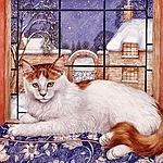 Аватар Белый кот лежит на окне, ву Cook Debbie
