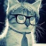Аватар Кот в очках и галстуке