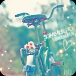 Аватар Велосипед с ромашками на багажнике (Summer / Лето)