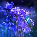 http://99px.ru/sstorage/1/2015/08/image_10608151327273340549.jpg