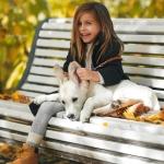 Аватар Девочка с собакой сидит на лавочке, ву Ash