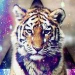 Аватар Тигр на фоне космоса
