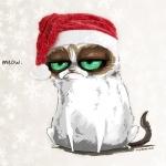 Аватар Недовольный кот в новогодней шапке