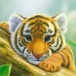Аватар Маленький тигренок, ву Kai Klimiont