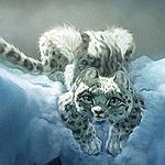 Аватар Снежный барс с голубыми глазами лежит на снегу, исходник by ailah