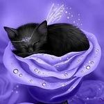 Аватар Черный котенок с диадемой на голове, уснул в голубой розе, исходник by Melissa Dawn Kittens