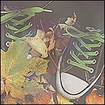 Аватар Ноги, обутые в кеды, в осенней листве