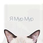 Аватар Ушки котенка, торчащие снизу (Я Мур Мур)