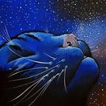 Аватар Мордочка кошки на фоне ночного неба, by Raphael Vavasseur