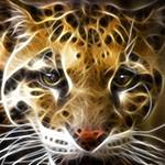 Аватар Морда леопарда крупным планом