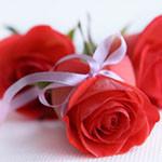 Аватар Красная роза, перевязанная лентой