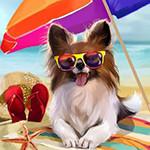 Аватар Пестрая собака в солнцезащитных очках лежит на лежанке на пляже под зонтом