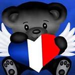 Аватар Серый медвежонок с сердечком в виде флага Франции в лапах