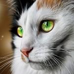 Аватар Мордашка зеленоглазой кошки, художник ThreshTheSky