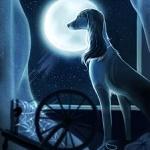 99px.ru аватар Пес на фоне полной луны