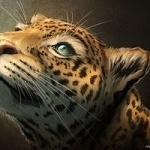Аватар Леопард смотрит вверх