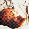 Аватар Рыжий котик с нарисованным кавайным смайликом на животе, свернувшись в клубочек лежит на постели