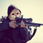 Аватар Прикольный кот с винтовкой