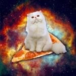 Аватар Персидский кот сидит на куске пиццы