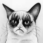 Аватар Сердитый кот со знаками на морде