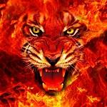 Аватар Оскал тигра в огне