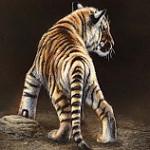 Аватар Тигренок стоит к нам хвостом, by Rebecca Latham