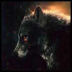 Аватар Волк с кровавым следом у глаза