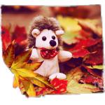 Аватар Игрушечный ежик среди разноцветных осенних листьев