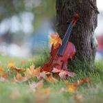 Аватар Скрипка у дерева в окружении осенних листьев