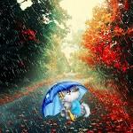 Аватар Кот под зонтом на осенней дождливой аллее