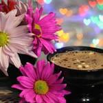 Аватар Чашка кофе рядом с разноцветными ромашками