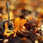 Аватар Гитара лежит среди осенних пожухших листьев