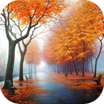 Аватар Деревья в золотом осеннем убранстве