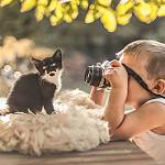 Аватар Маленький мальчик фотографирует котенка