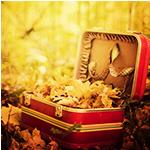 Аватар Полный чемодан пожелтевших листьев стоит в осеннем лесу