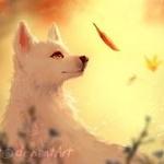 Аватар Собака смотрит на падающий осенний лист
