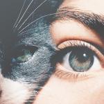 Аватар Девушка и кошка