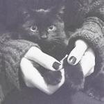 Аватар Черная кошка у девушки на руках