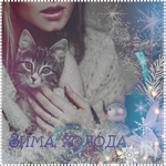 Аватар Девушка прижимает к себе полосатого котенка, (Зима, холода.)