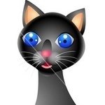 Аватар Голубоглазая удивленная кошка